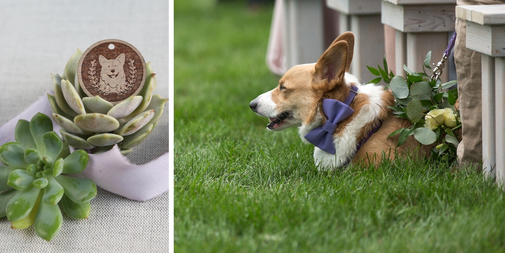 corgi wedding ideas and custom details and invitations